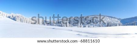 winter panorama - stock photo