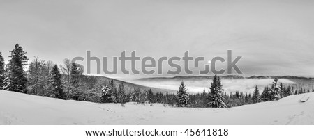 winter panorama, Black Forest, Germany - stock photo