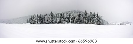 Winter panorama XXL - stock photo