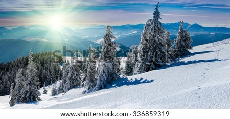 Winter panoramic landscape in mountains. Snow covered trees and mountain peaks in the distance with sunlight. - stock photo