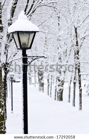 Winter park covered with fresh white snow - stock photo