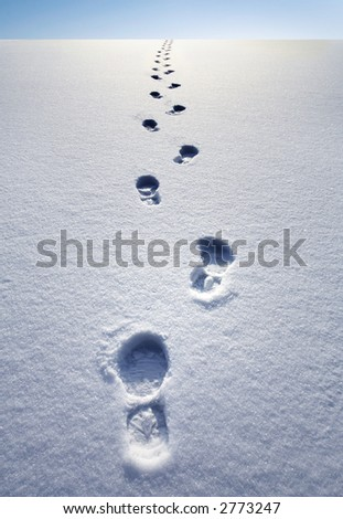winter path - stock photo