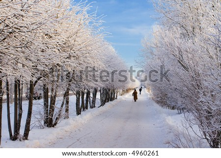 Winter path in park on which people walk - stock photo
