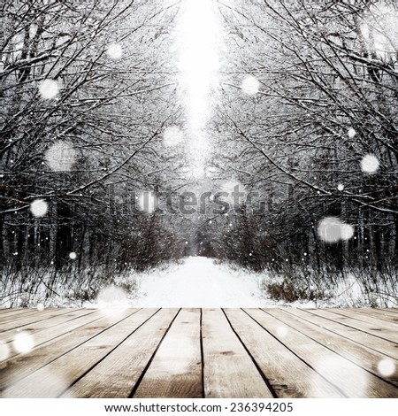 Winter path in the forest with wood plank floor background - stock photo
