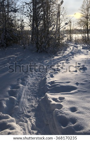 winter path in the woods at sunset - stock photo