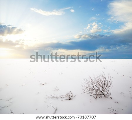 Winter plain. Composition of nature. - stock photo
