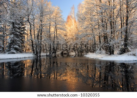 Winter reflection - stock photo