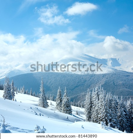 Winter rime and snow covered landscape with Goverla Mount view (Carpathian Mountains, Ukraine). Two shots stitch image. - stock photo