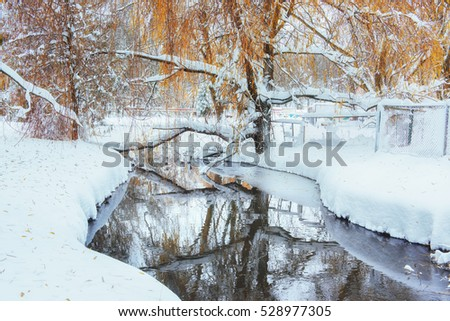 winter river in a beautiful day.