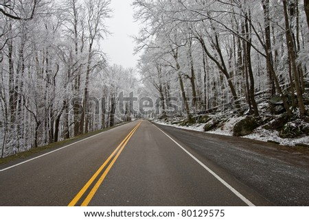 Winter road and trees covered with snow - stock photo