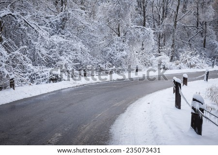 Winter road curving through icy forest covered in snow after ice storm and snowfall. Ontario, Canada. - stock photo
