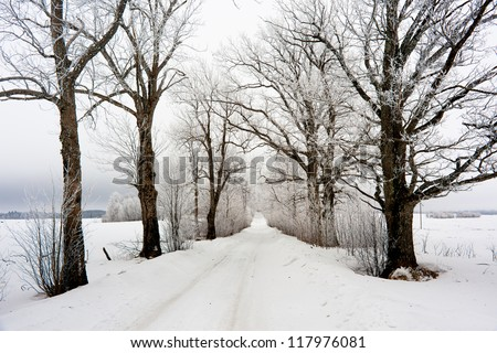 Winter road in Lithuania - stock photo