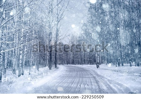Winter road in snowy forest landscape - stock photo