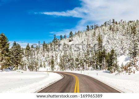 winter road in snowy forest on a sunny day - stock photo