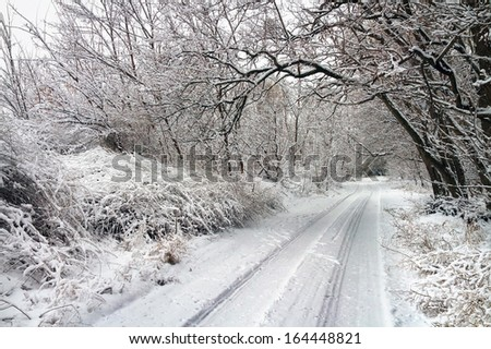 Winter road in snowy forest. White winter landscape with trees covered in snow and road  - stock photo