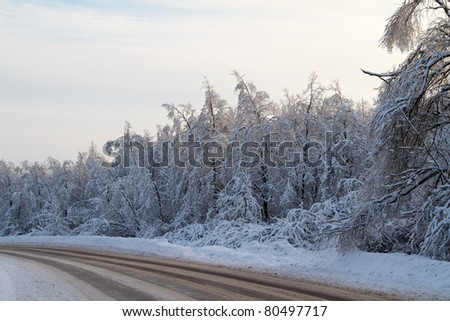 Winter road near forest in Russia - stock photo