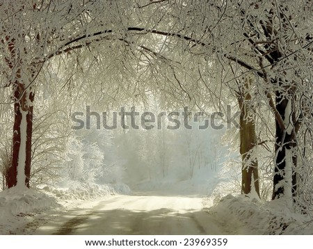 Winter road running between the frozen trees. Magic rays of the sun fall on the branches of trees. - stock photo