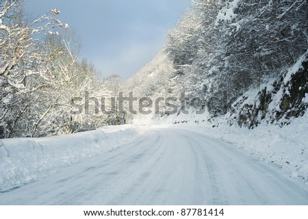 Winter road - Snow covered trees and road on winter