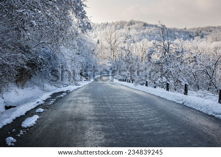 Winter road through icy forest after ice storm and snowfall. Ontario, Canada. - stock photo