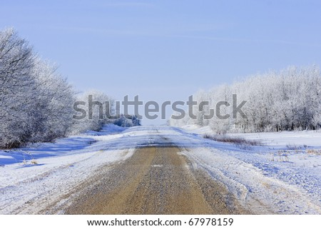 Winter road with blowing snow across the cold landscape - stock photo