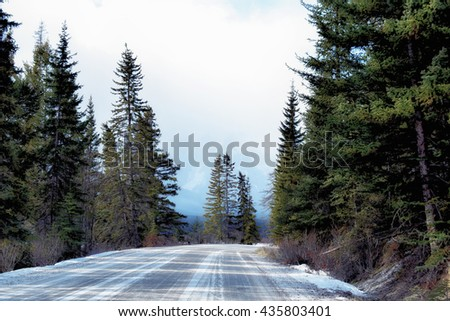 Winter road with fir trees - stock photo