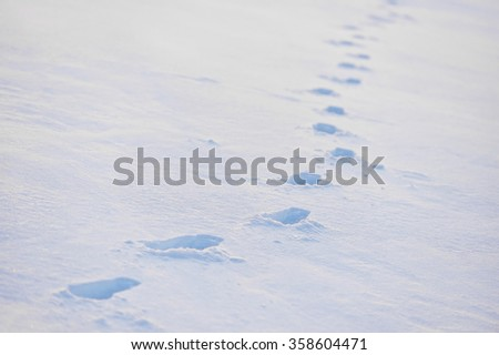 Winter scene with fresh footprints in deep powder snow - stock photo