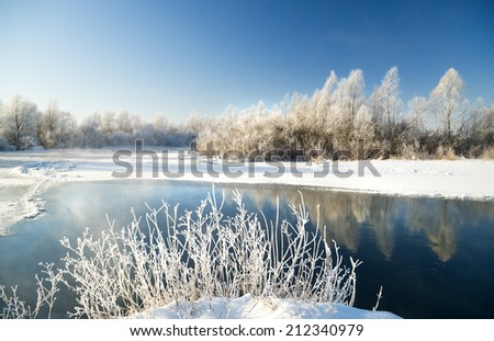 winter scene with river background. Nature composition. - stock photo