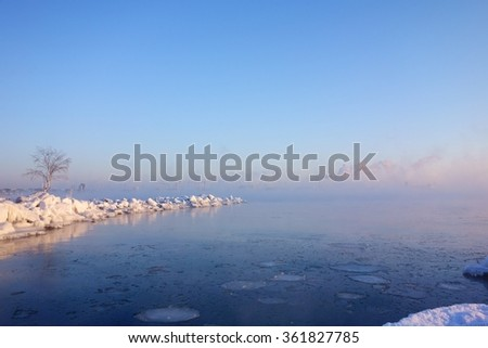Winter scene with snow covered tree and rocks by the Baltic sea in Helsinki, Finland on cold winter morning with sea smoke in Helsinki, Finland on 7 January 2016. - stock photo