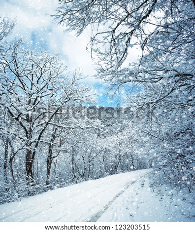 Winter scene with snowy road - stock photo