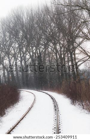 Winter scenery with railroad in remote rural area - stock photo