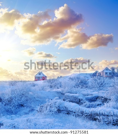 Winter scenery with trees and old houses - stock photo