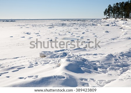 winter sea bay with white snow over ice surface and forest and blue sky on horizon - stock photo