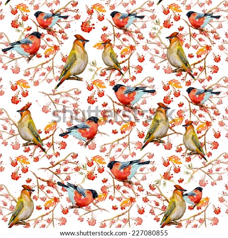 winter seamless texture with cute birds watercolor - stock photo