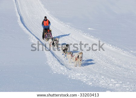 Winter Sled Dog Race - stock photo