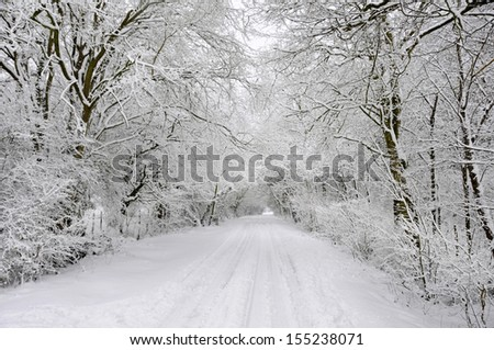 Winter snow covered country lane through woodland trees - stock photo