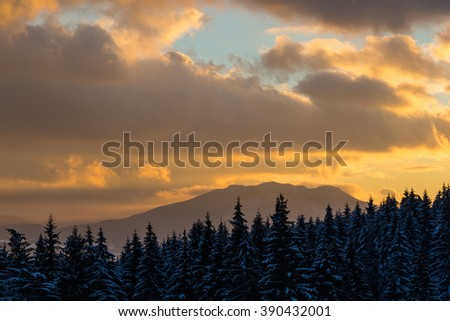 Winter snow covered forest and mountain peaks  on the background of dramatic colorful golden sunset. Clouds illuminated by the sun. - stock photo