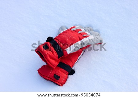 Winter Snow Gloves
