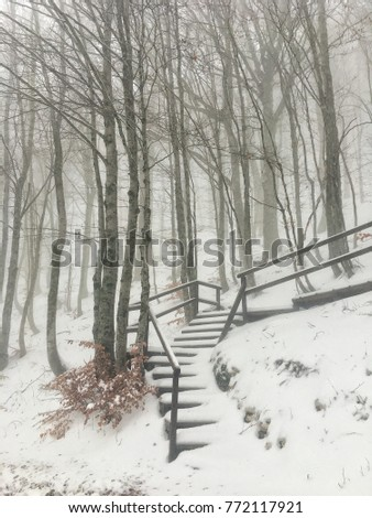 Winter snow landscape with tree house steps stairs
