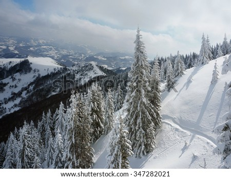 Winter, Snow, Pine, Landscape, Blue sky, Nature, Mountain
