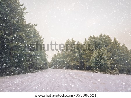 Winter snow scene with forest background - stock photo