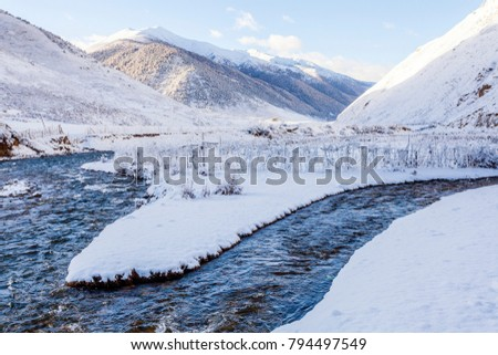 Winter snow village tree hanging river