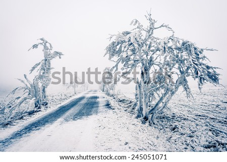 Winter snowbound road covered with snow and rime - stock photo