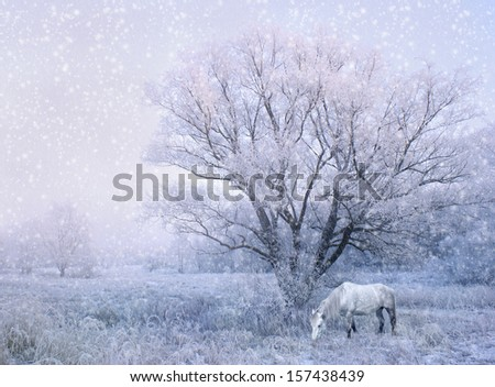winter snowfall landscape with white horse - stock photo