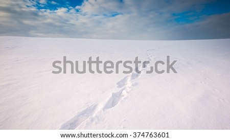 Winter snowy field landscape with footprints in snow. Polish fields after blizzard. - stock photo