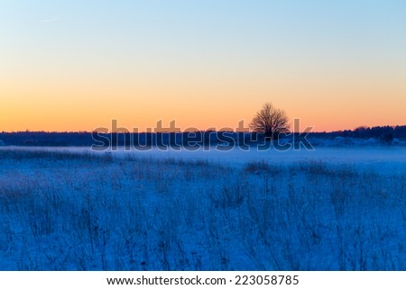 Winter snowy rural landscape in evening with little fog - stock photo