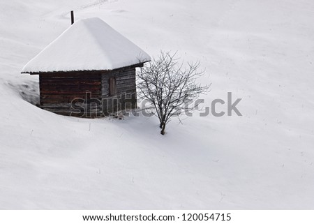 winter solitude with a small cottage and a single tree, all covered with white snow - stock photo