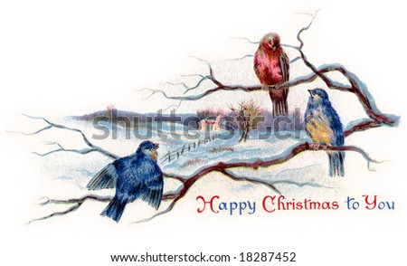 Winter Songbirds - a 1919 vintage Christmas illustration - stock photo
