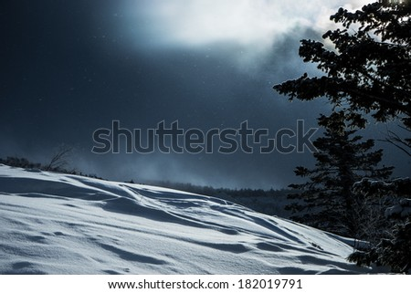 Winter storm - stock photo