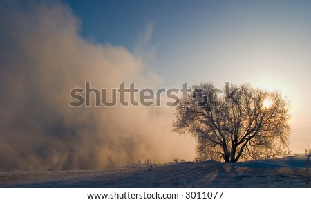 Winter sunset fog