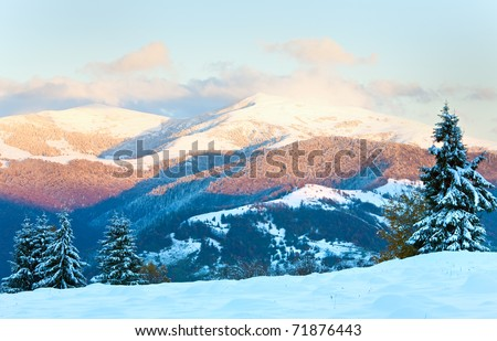 winter sunset mountain landscape with rime and snow covered spruce trees  (Carpathian, Ukraine) - stock photo
